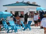 A dynamic beach community