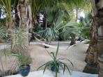 Palms garden and hammock