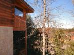 Pigeon Forge Log Townhome Rental 'Almost Bearadise'