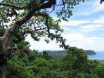 Canopy / zipline tours