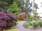 Bethell Woods: a Wine Country B and B