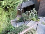 Stairs to the entrance, there is another entrance that is easier to access from the driveway