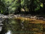 Kolasin River – Svinjaca