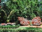 Busch Gardens - attractions nearby abound, museums, rivers, springs, theme parks