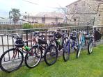 Bicicletas a disposición de los clientes