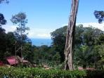 Uvita, Olympic Pool, Ocean View, 5 Min from Beach