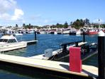 Local attraction: Robe boat harbour, fishing boat fleet