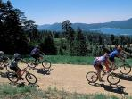 BIG BEAR MOUNTAIN TRAILS NEARBY!!!