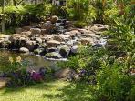 Water gardens towards pool area
