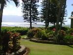 Wavecrest C107 Ocean and Garden View