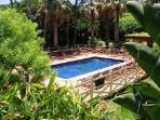 Paniolo Hale Pool