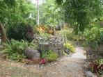 While you are on St. Croix, check out the amazing St. George Botanical Gardens