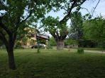 B&B Albero Cavo - Parma. The garden