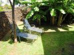 Hale Ko back yard with mature banana trees, BBQ, outside dining