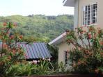 View between the villa