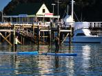 Stand Up Paddling to Historic Russell Village, 1st Capital of New Zealand
