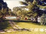 View of the pool from the patio in the garden of 2000sqm
