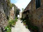 Street in Campiglia