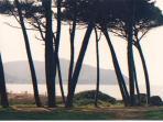 Bay of Baratti
