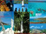 Things to do while in Bequia. Ask us for Reccomendations