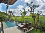 POOL AREA, WITH RICE FIELD, MOUNTAIN VIEWS, TAKEN FROM LIVING AREA AT BALI UBUD VILLA
