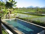 POOL AREA, WITH SWEEPING VIEWS OF RICE FIELDS AND MOUNTAINS