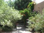 EAST PATIO IN BLOOM -