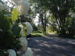 East driveway