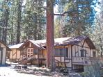 Our Swiss-style Chalet was hand-crafted on 5 acres of old-growth pines. Just 2 hours from LA or OC.