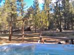 Large hot tub sits at the edge of the National Forest, with a commanding view of the sky.