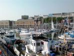 Plenty of boats in the marina