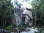 Treetop Palapa in the Jungle