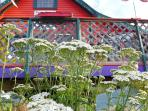 Wildflowers blooming in front of your porch