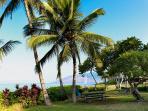 Kihei Akahi Across From Kamaole Beach #2