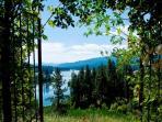 view through the rose garden trellis to the lake