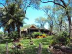 Experience true old Hawaii in our home in MAKENA. Outdoor shower, Hammock, 2 loungers in yard n deck