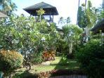Garden & Sala