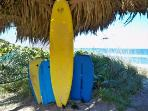 Surf and Boogie Board