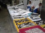 fishermen's offer on Kvatric