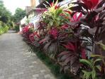 Follow this pathway to Bintang Supermarket