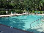 Wild Pines Swimming Pool