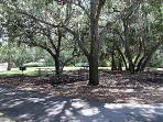Estero Bay Park Picnic Area