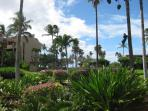 View of the grounds down to the Ocean.