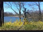 Five minutes walk to biking and walking paths at nearby Shaker Lakes