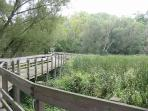 Explore the Shaker Nature Center just a short walk away.