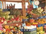 Get your fresh fruit&vegetables at the Floating fruit&vegetable market. 15 minute walking distance.