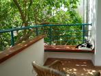 Shaded terrace, with Chupchik my cat