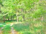 Trails at Ronora Lodge and Retreat Center