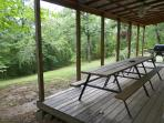 Wooded view from the back deck