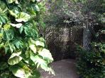 Find a quiet corner in the garden and have your morning coffee - or Cuban 'bucci!'